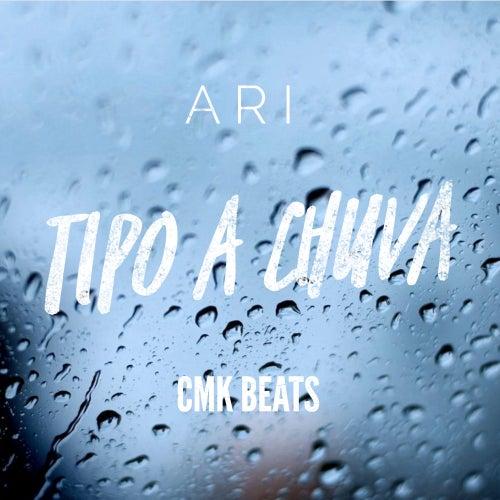Tipo a Chuva by Ari