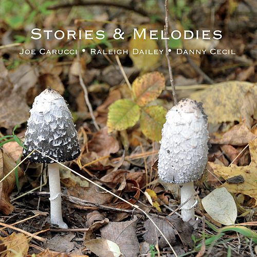 Stories and Melodies de Raleigh Dailey Joe Carucci