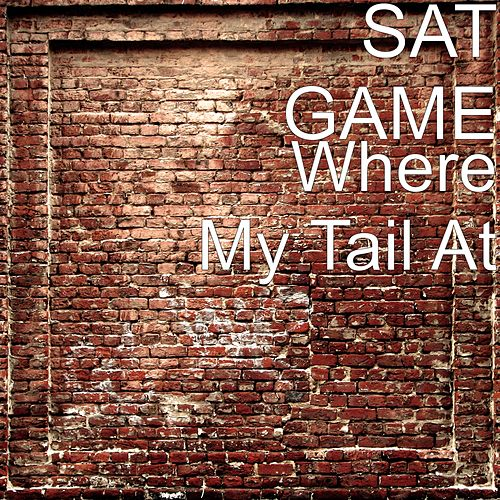 Where My Tail At by Sat Game