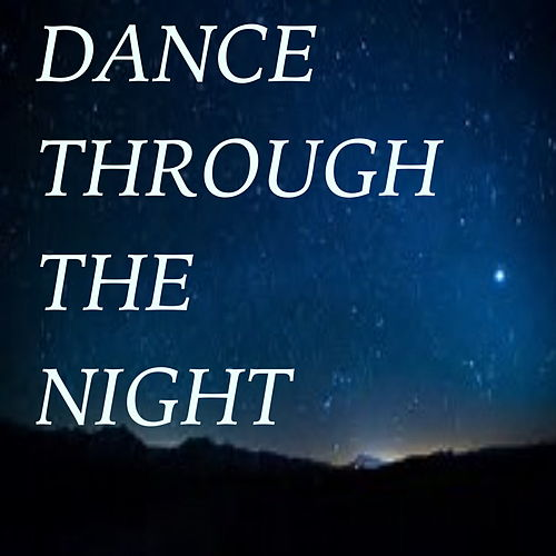 Dance Through The Night de Various Artists