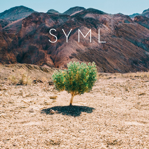 In My Body by SYML