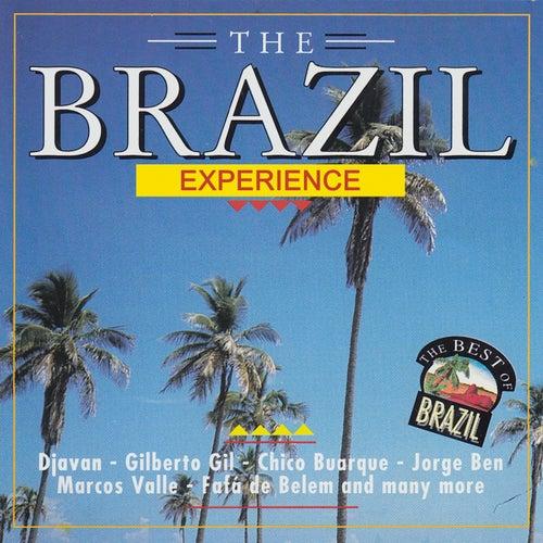 The Brazil Experience de Various Artists