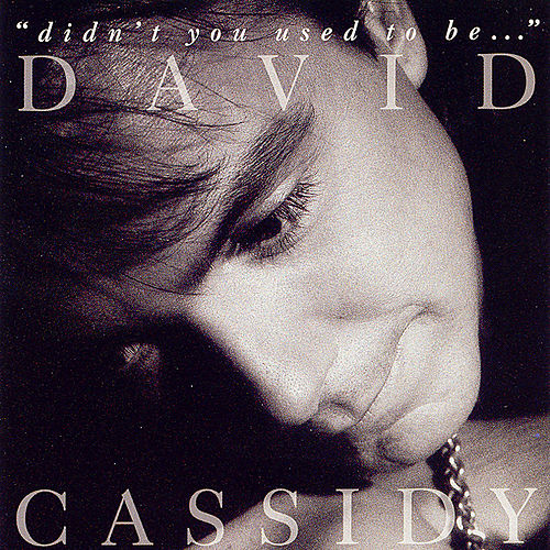 Didn't You Used To Be... by David Cassidy