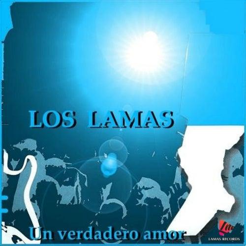 Un Verdadero Amor by Los Lamas
