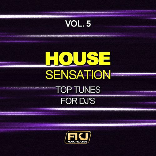 House Sensation, Vol. 5 (Top Tunes for DJ's) by Various Artists