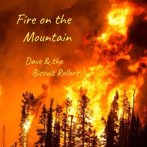 Fire on the Mountain de Dave