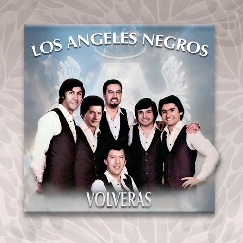 Volverás de Los Angeles Negros