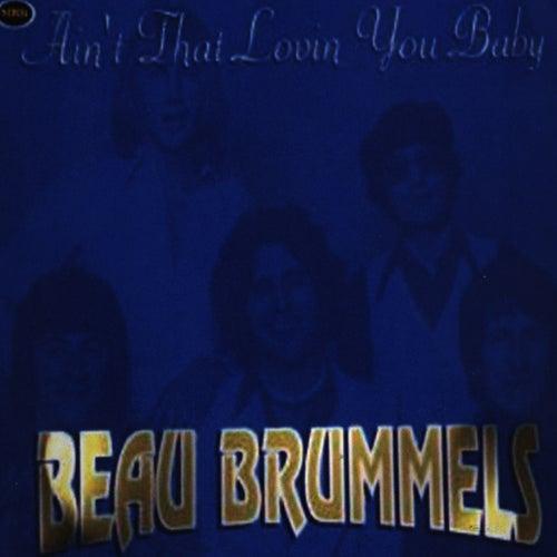Ain't That Lovin' You Baby de The Beau Brummels