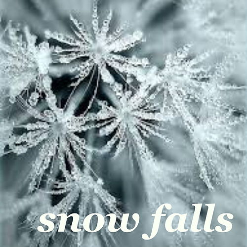 Snow Falls de Various Artists