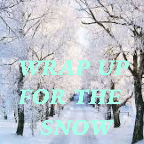 Wrap Up For The Snow de Various Artists