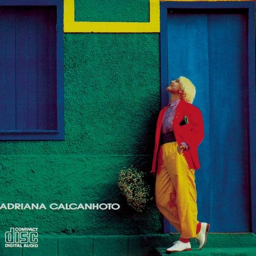 Enguico de Adriana Calcanhotto