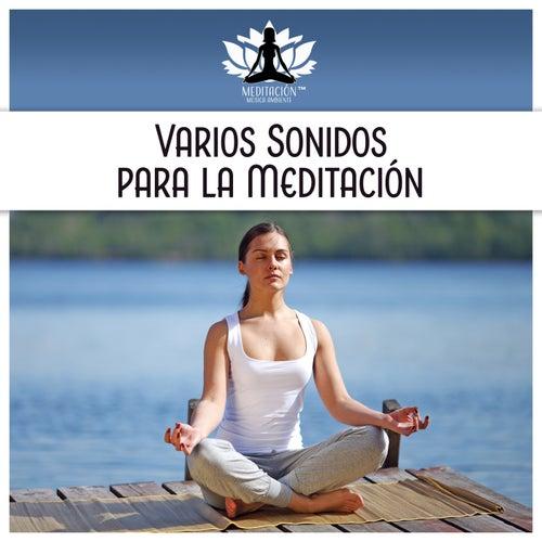 Varios Sonidos para la Meditación de Meditación Música Ambiente