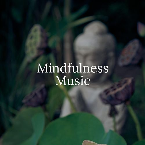 Mindfulness Music: Twin Heart Meditation, Sleep Meditation, Spa Meditation Music de Massage Tribe
