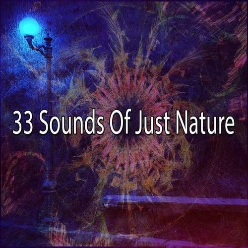 33 Sounds Of Just Nature de Meditación Música Ambiente