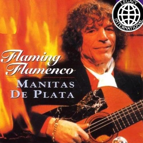 Flaming Flamenco de Manitas de Plata