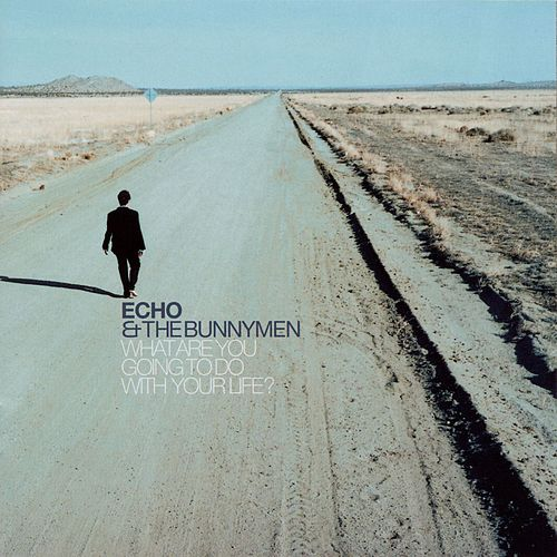 What Are You Going To Do With Your Life? di Echo and the Bunnymen