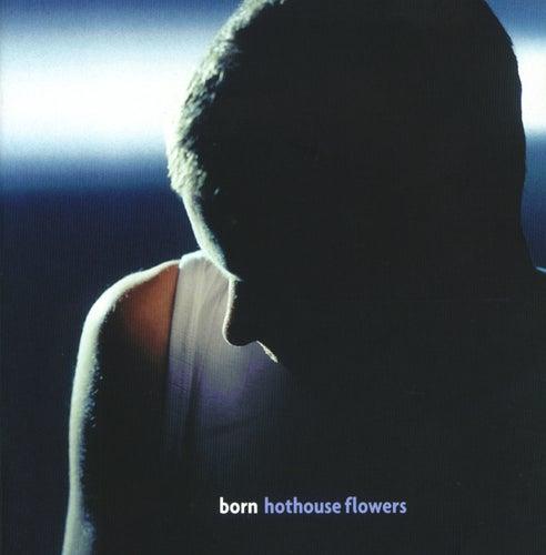 Born van Hothouse Flowers