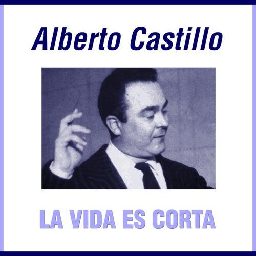 Grandes Del Tango 47 - Alberto Castillo 2 von Alberto Castillo