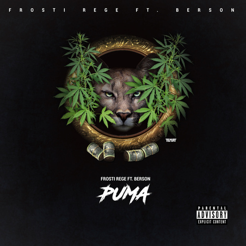 Puma de Frosti Rege