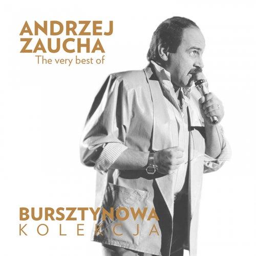 Bursztynowa Kolekcja - The Very Best of Andrzej Zaucha de Andrzej Zaucha