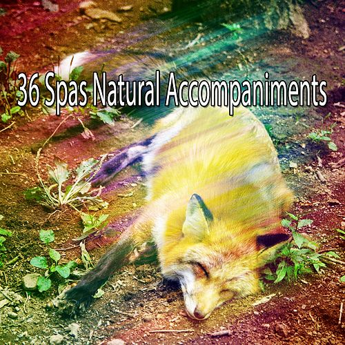 36 Spas Natural Accompaniments von Best Relaxing SPA Music