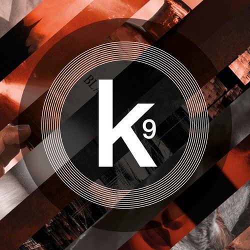 Kscope, Vol. 9 de Various Artists