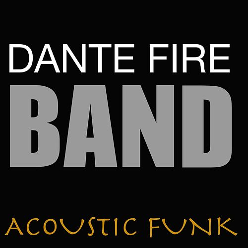 Acoustic Funk by Various Artists
