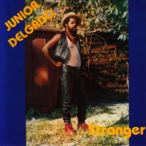 Stranger by Junior Delgado