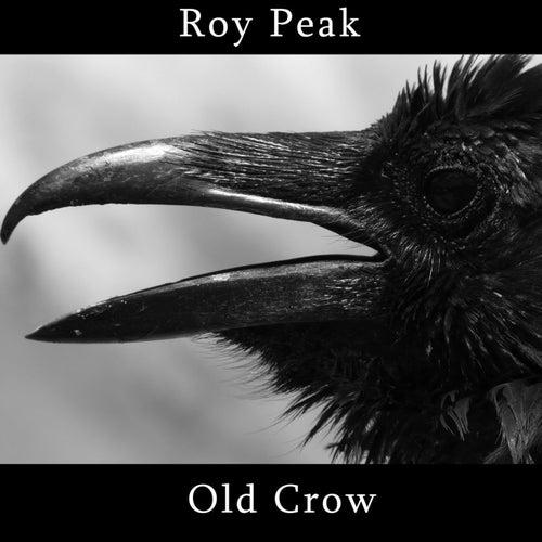 Old Crow by Roy Peak