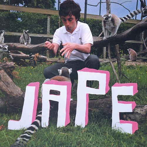The Monkeys in the Zoo Have More Fun Than Me by Jape