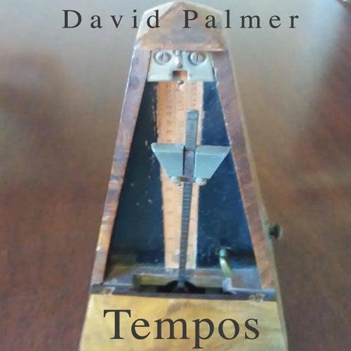 Tempos de David Palmer