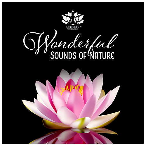 Wonderful Sounds of Nature - Deep Relaxation, Meditation, Sleep, Spa & Zen Garden de Meditación Música Ambiente