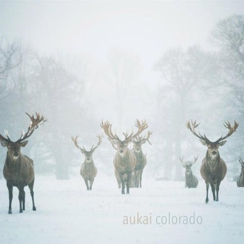 Colorado by Aukai