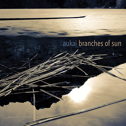 Branches of Sun by Aukai