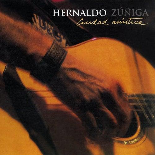 Ciudad Acústica de Hernaldo Zúñiga