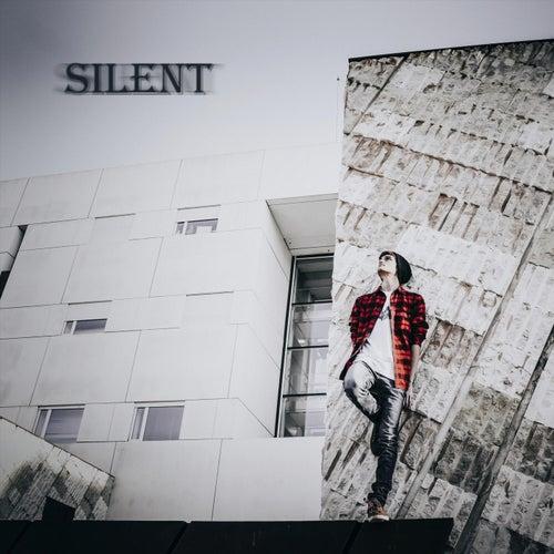 Silent by Javier Manzanares