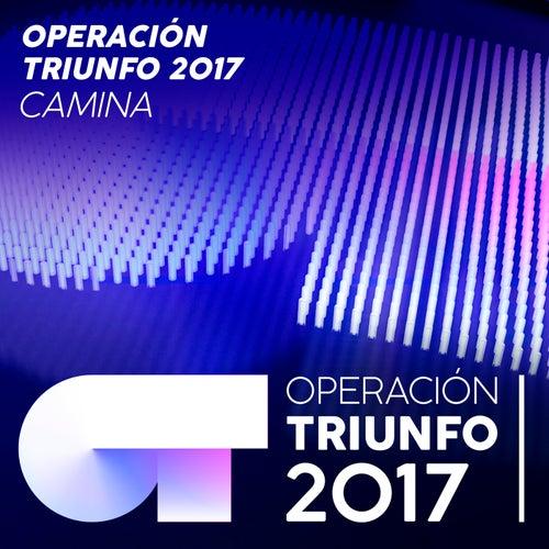 Camina von Operación Triunfo 2017