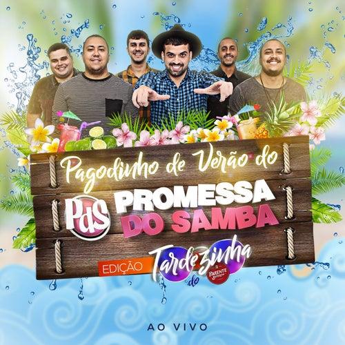 Pagodinho de Verão do Promessa do Samba (Ao Vivo) de Promessa do Samba