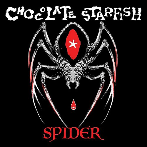 Spider by Chocolate Starfish