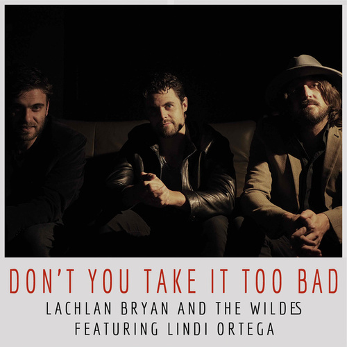 Don't You Take It Too Bad de Lachlan Bryan and The Wildes