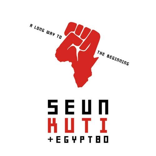 A Long Way To The Beginning by Seun Kuti