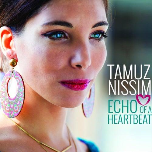 Echo of a Heartbeat by Tamuz Nissim