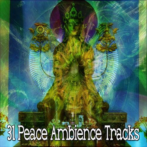 31 Peace Ambience Tracks de Meditación Música Ambiente