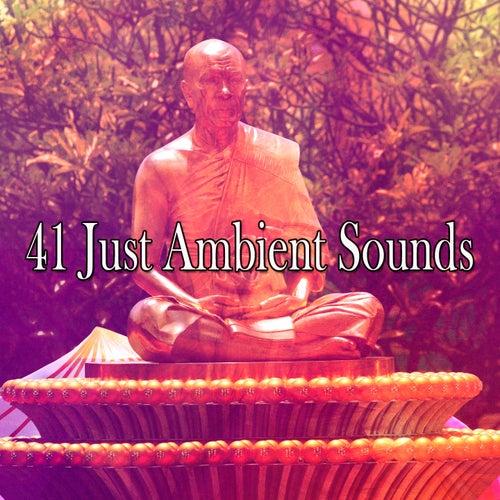41 Just Ambient Sounds de Meditación Música Ambiente