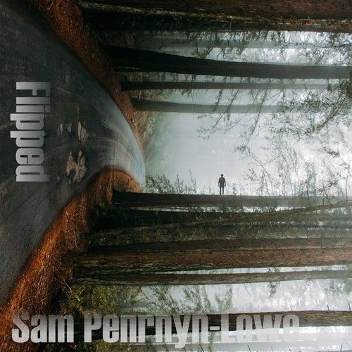 Flipped by Sam Penrhyn-Lowe