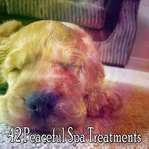 42 Peaceful Spa Treatments by Relaxing Spa Music