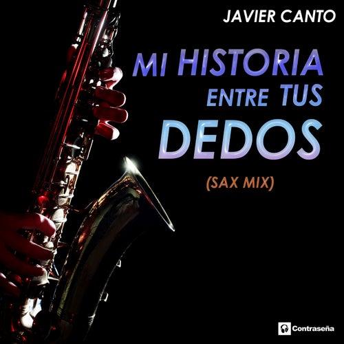 Mi Historia Entre Tus Dedos von Javier Canto