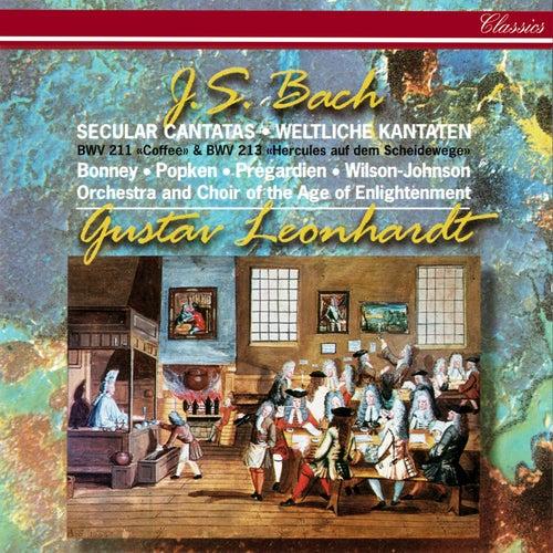 J.S. Bach: Secular Cantatas Nos. 211