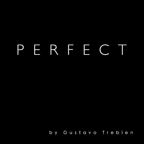 Perfect by Gustavo Trebien