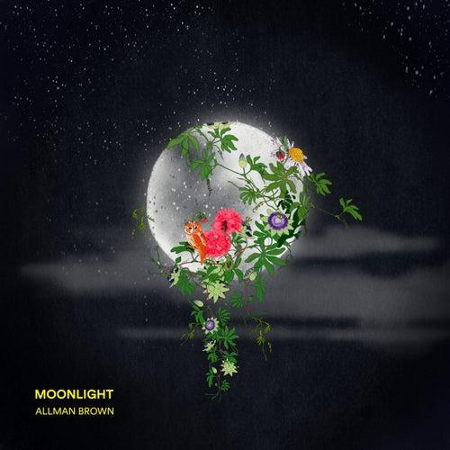 Moonlight de Allman Brown